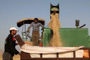 بورس کالا راهگشای ساماندهی محصولات کشاورزی است